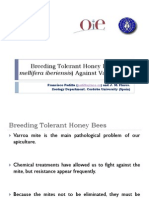 Breeding Tolerant Honey Bees