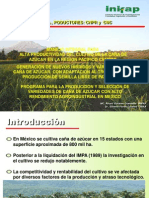 Variedades de Cana Foro UNC-InIFAP M2