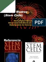 células madresrevised
