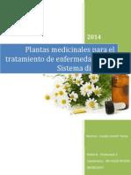 Plantas Medicinales Para El Tratamiento de Enfermedades Del Sistema Digestivo