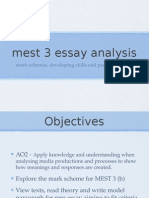 Mest 3 Essay Analysis