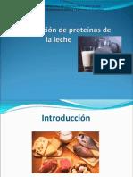 Seminario primer laboratorio, tema proteinas.ppt