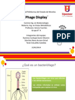 Phage Dislay