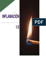 inflama-100706232649-phpapp02