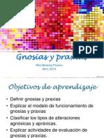 Gnosias y Praxias 2014
