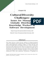 Cultural Diversity Challenges