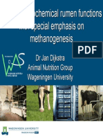 Modelling Biochemical Rumen Functions With Special Emphasis on Methanogenesis