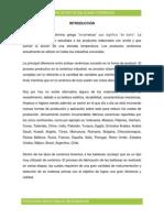 Informe N° 04 - Obtención de Cerámicas