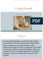 salt crystal growth ppt