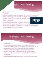 biological weathering