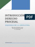 IDP 2011. ESQUEMAS.pdf
