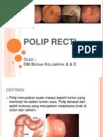 Polip Recti