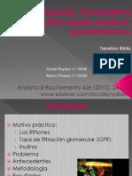 seminario1-inulina3
