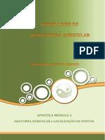 Apostila Aurículo - Módulo I - Anatomia Auricular e Localização de Pontos