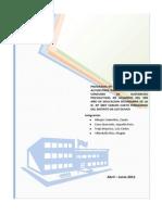 Programa de Prevencion Final Colegio Carlos Cueto Fernandini