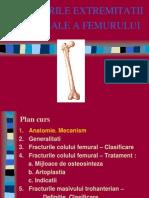 Nicolescu Fracturi Femur