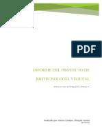 Informe Proyecto Cultivo Casero