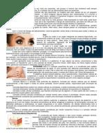 design de Sombracelha.docx