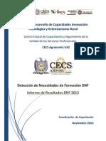 Informe DNF 2013 DesCap VF