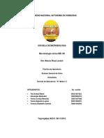 Examen General de Orina Uroanalisis