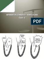 Aparatul Cardio-Vascular Curs 2