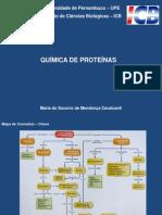 Aula Socorro - Proteinas 2013 (1)