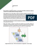 Lecciones Modulo Ingenieria Genetica Agropecuaria