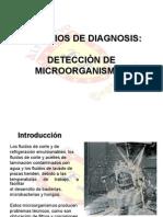 Servicios de Diagnosis - Deteccion de Microorganismos