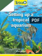 Setting Up a Tropical Aquarium