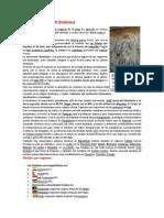 Lectura 7-El Hinduismo -10septiembre2014