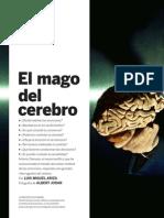 El Mago Del Cerebro Atonio Damasio
