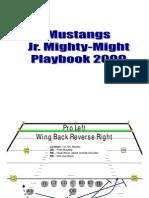 Simplified Playbook 2009