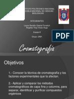 Cromatografia La Buena