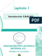 1_Introduccion CAALMA
