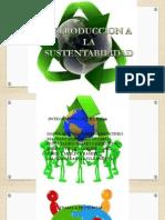 Principios de La Sustentabilidad