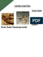 Australian Snake Bites
