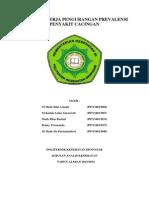 Program Kerja Pengurangan Prevalensi Penyakit Cacingan