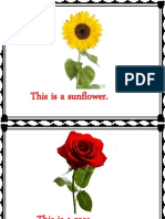 Flowers Slides