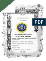 Informe Open Erp