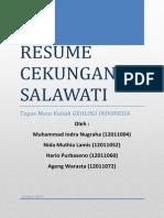 Resume Cekungan Salawati