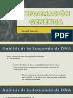 Informacion Genetica