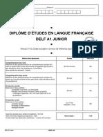 Delf Junior a1