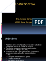 extraodenucleotideos.ppt