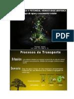 2. Termodinámica y Potencial Hidrico.pptx [Autoguardado]