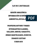 Problematicas Del Amazonas
