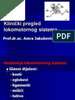 Klinička Propedeutika Lokomotornog Sistema 17.02.13.