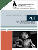 Desnutrición y Anemia