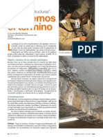 ED96 patología
