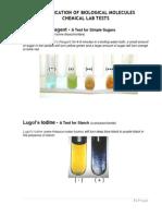 Identification of Biomolecules LAB TEST RESULTS