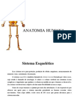 Anatomia Humana - Incompleto